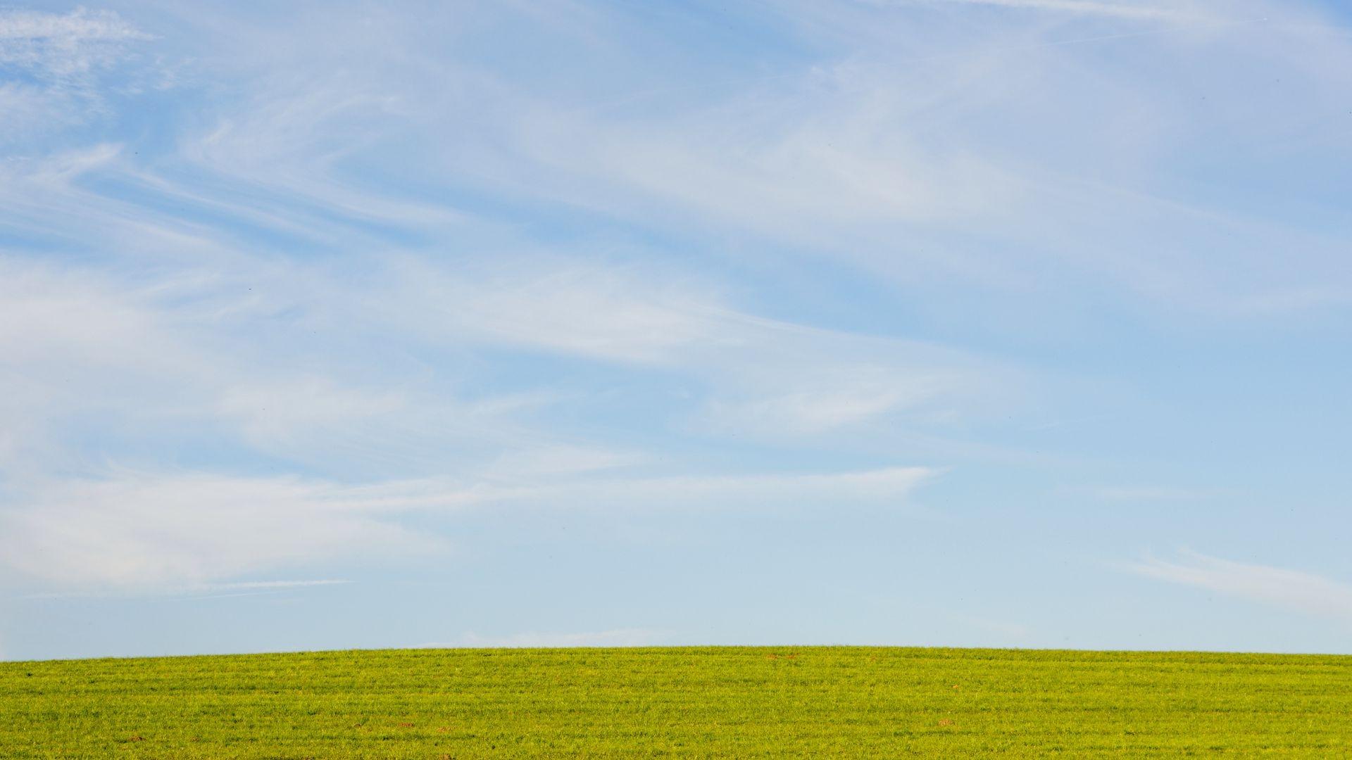 The Lawn Full HD Wallpaper