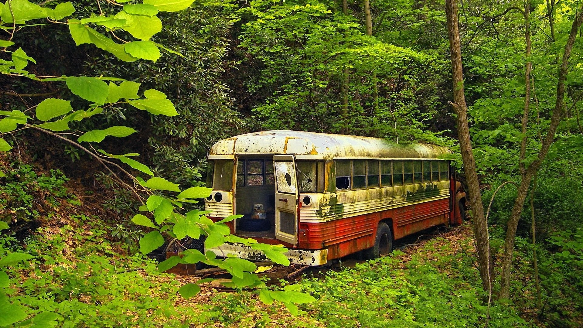 Old Bus Download Wallpaper