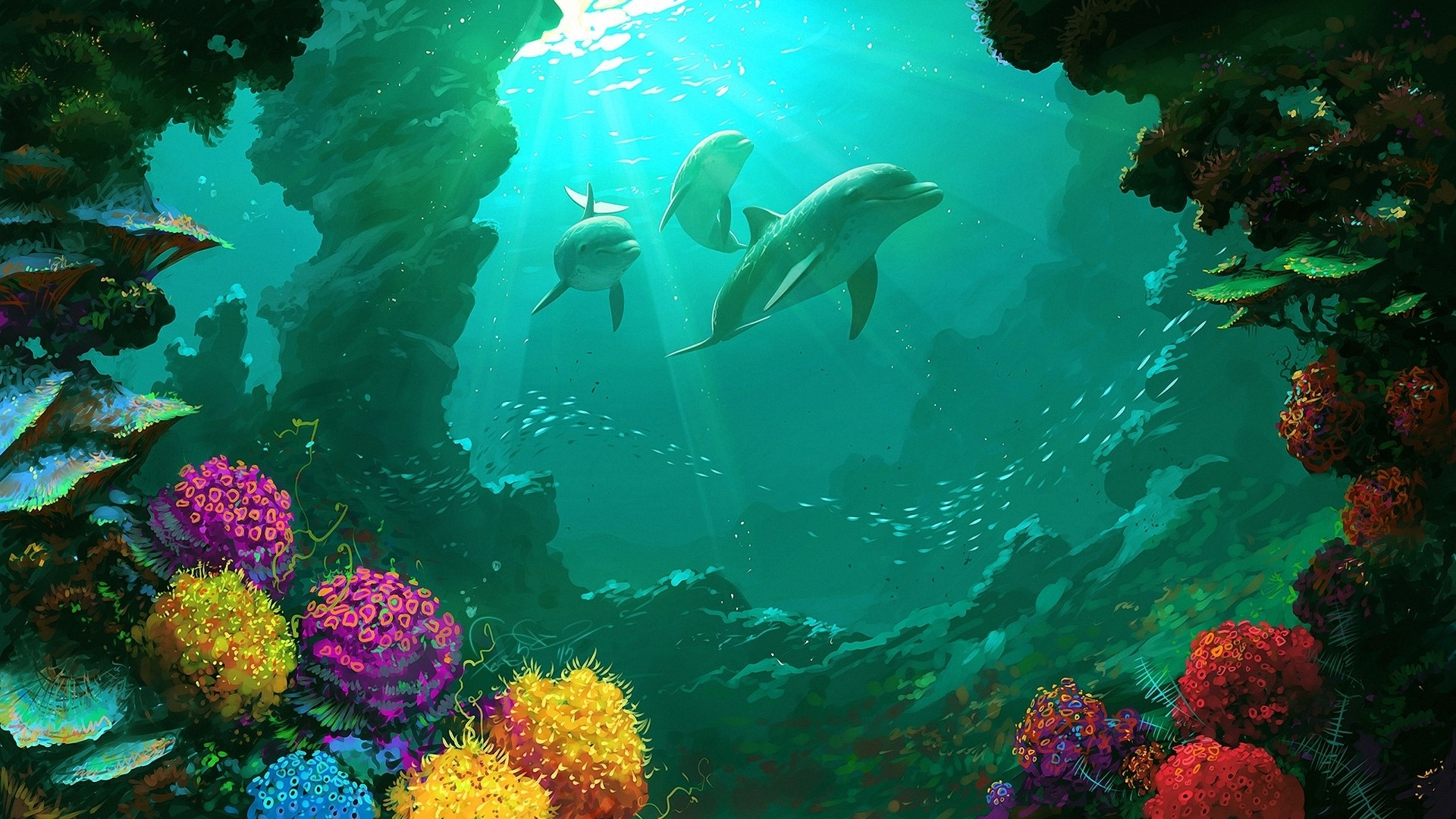 Coral Reef High Quality