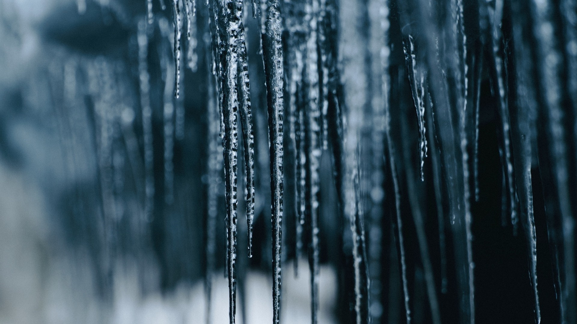 Icicles Wallpaper image hd