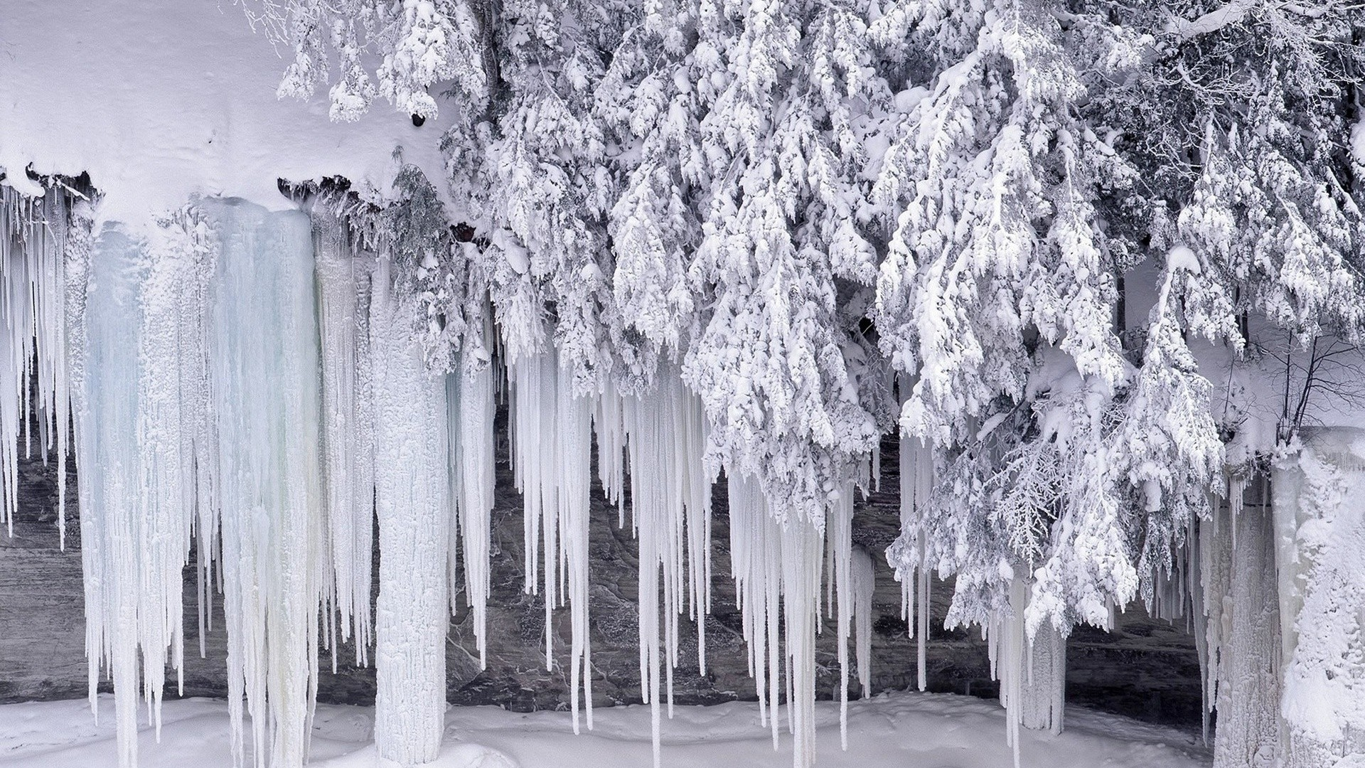 Icicles Picture
