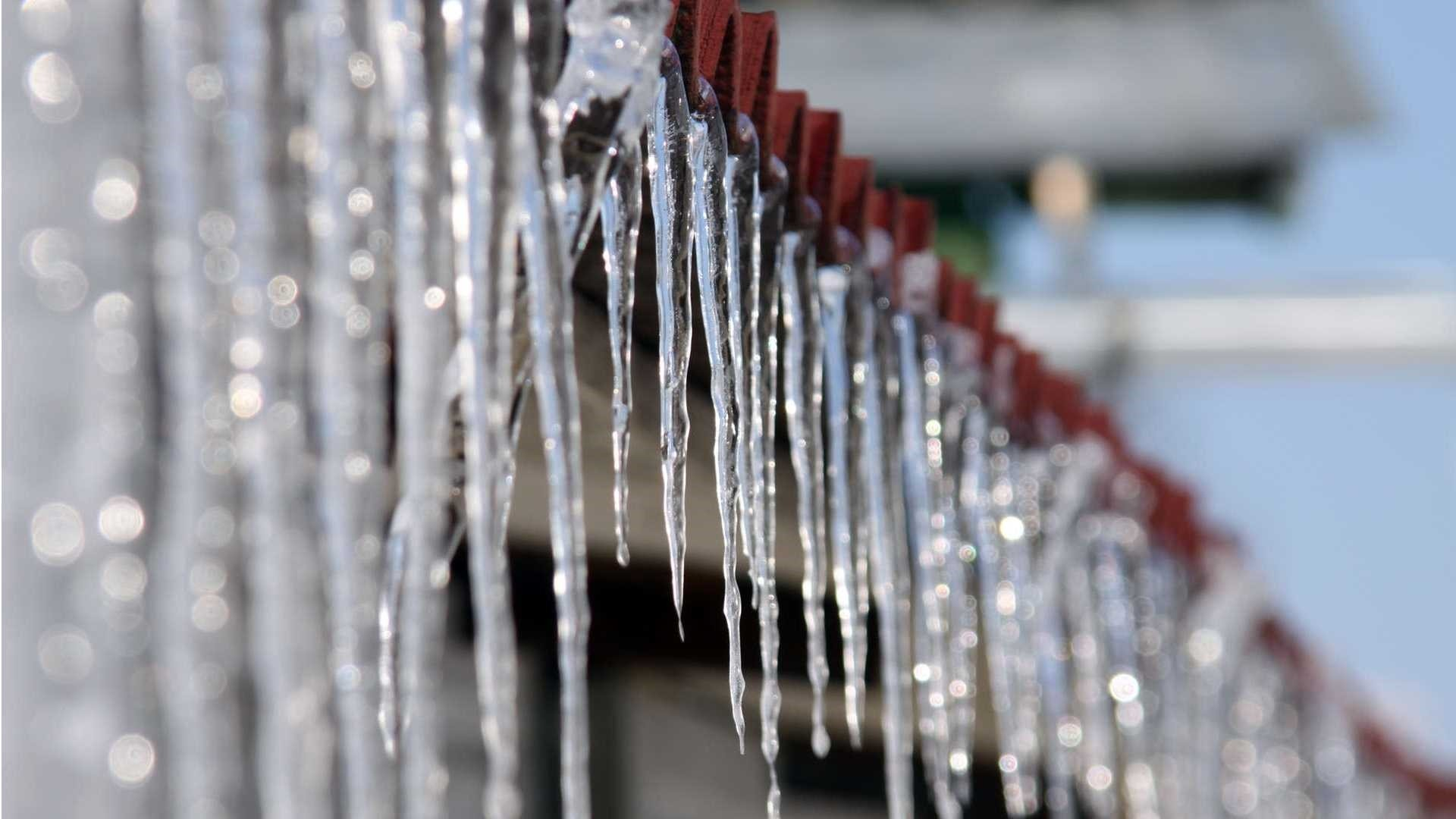 Icicles Free Wallpaper