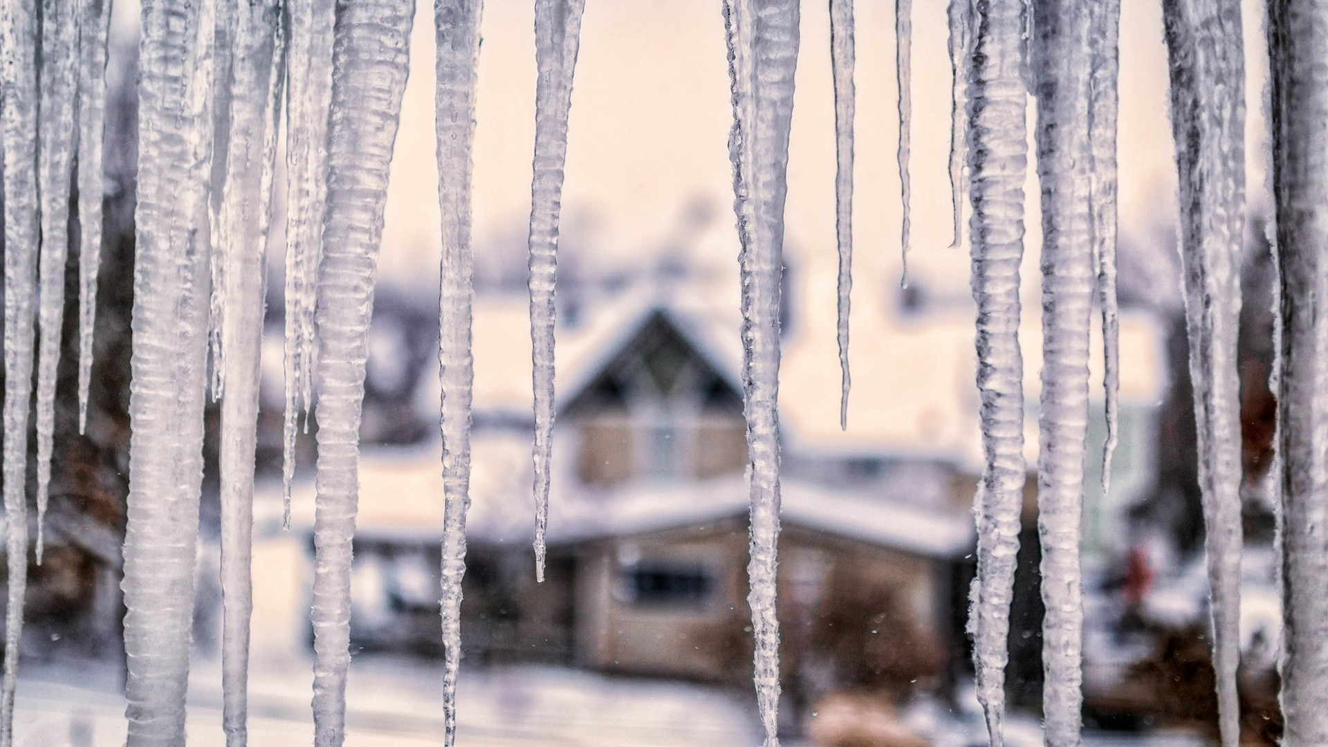 Icicles Free Wallpaper and Background