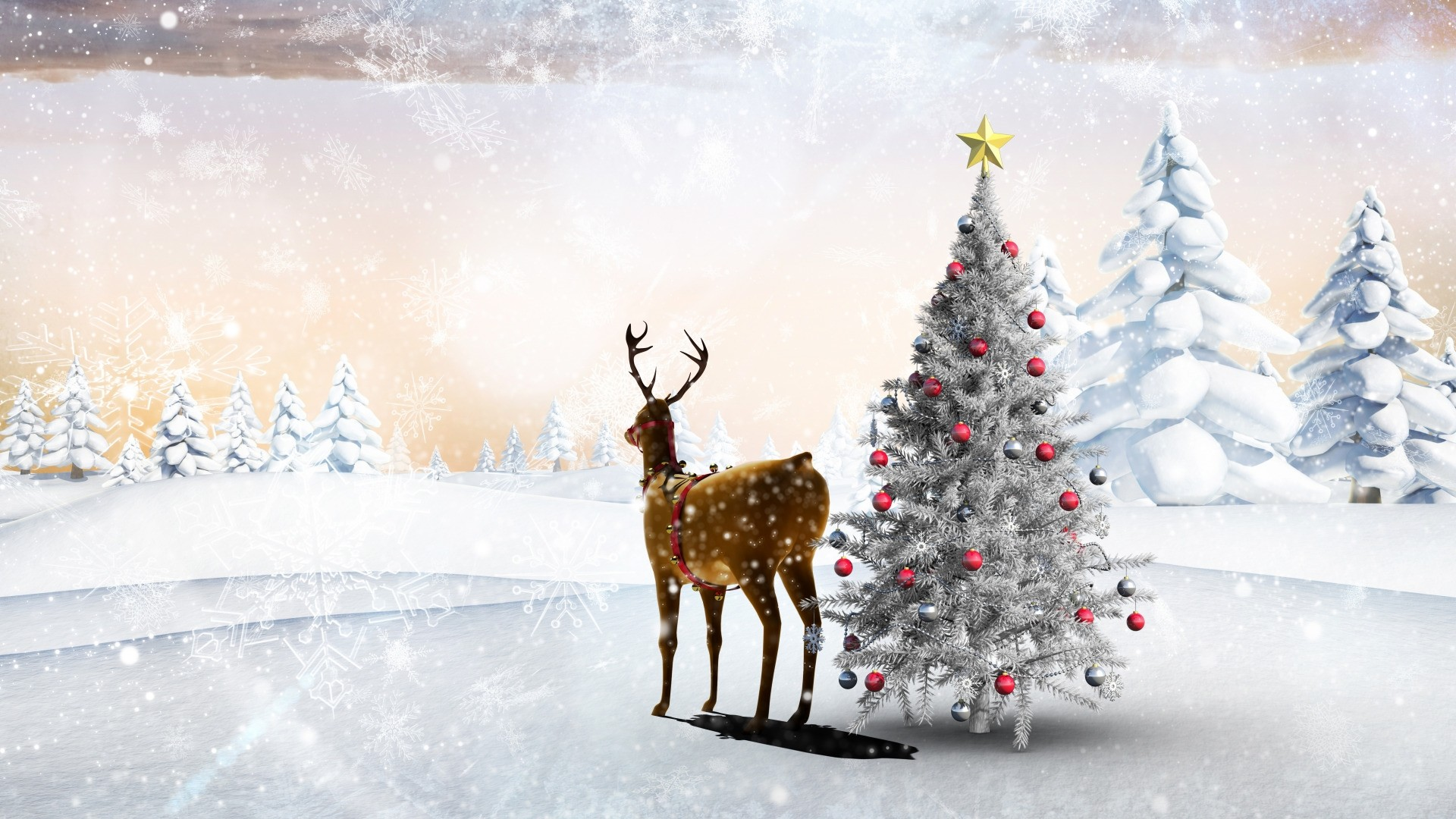 Reindeer HD Wallpaper