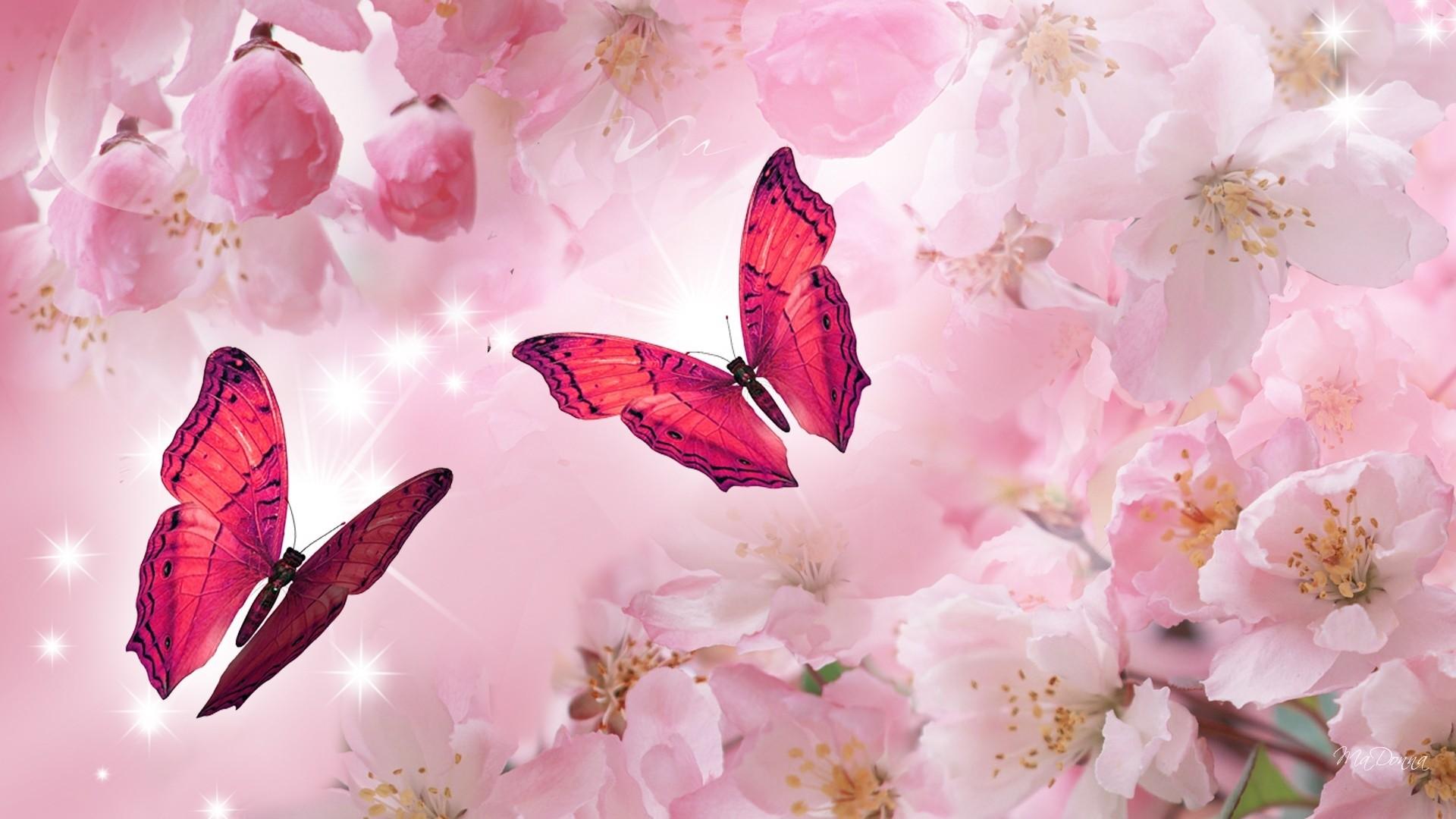 Pink Butterfly PC Wallpaper HD