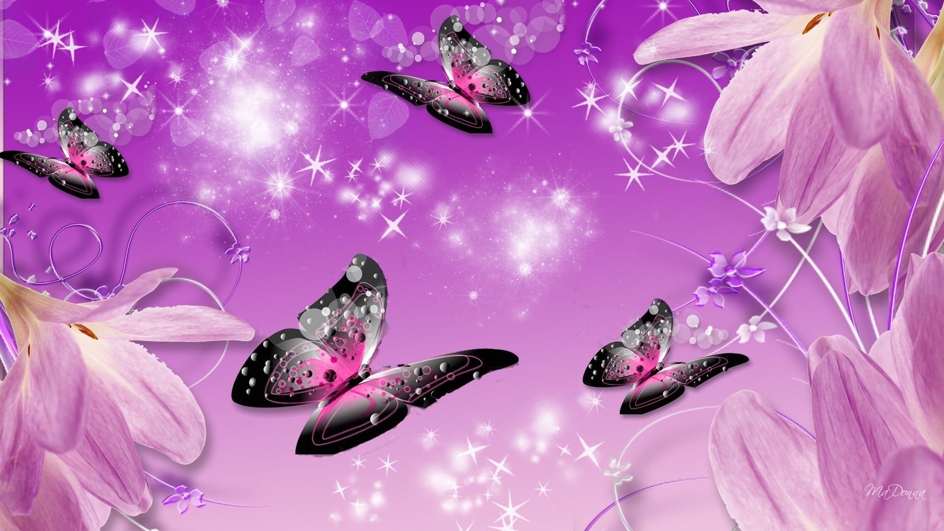 Pink Butterfly Download Wallpaper