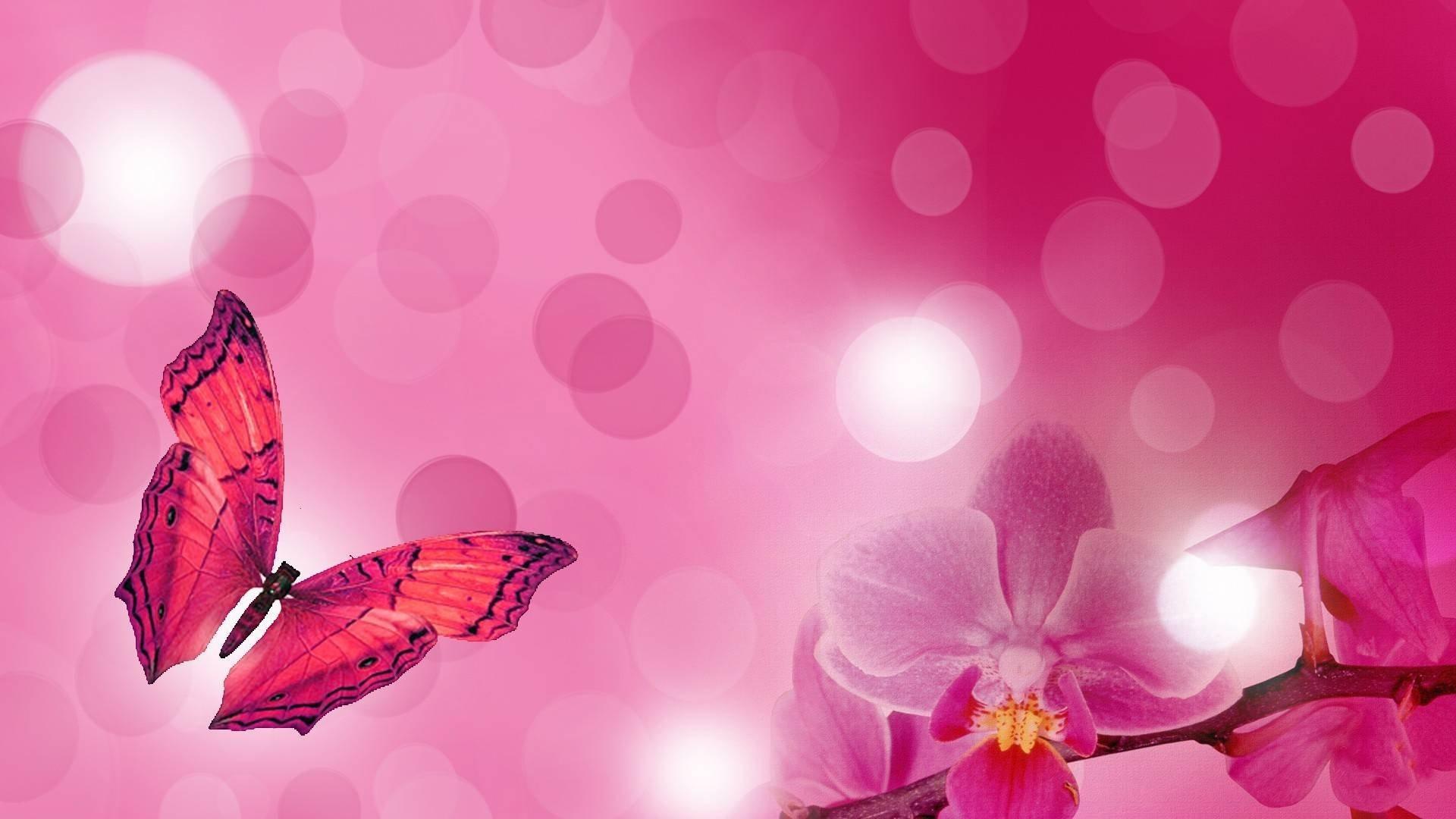 Pink Butterfly PC Wallpaper
