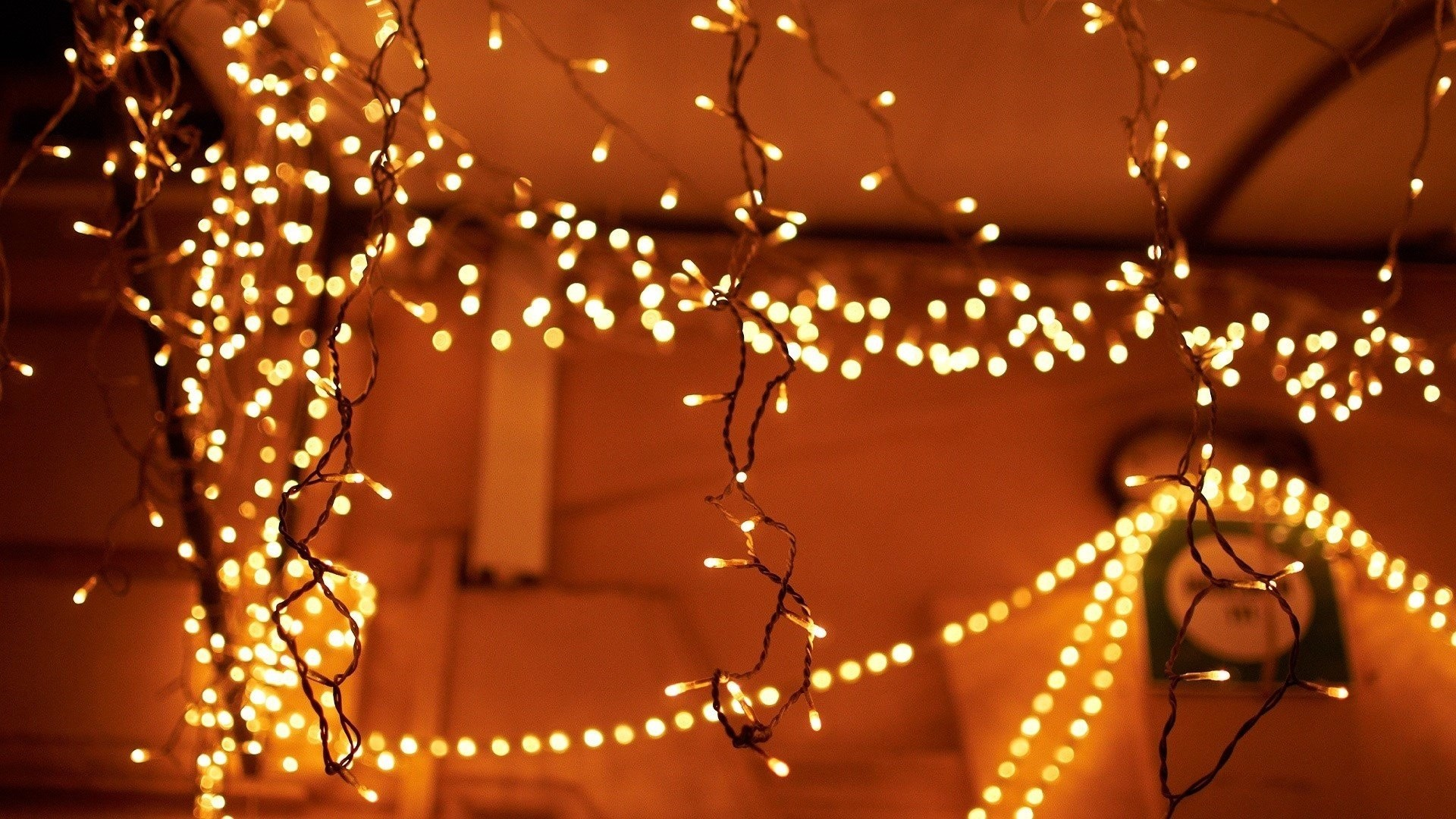Fairy Lights Picture