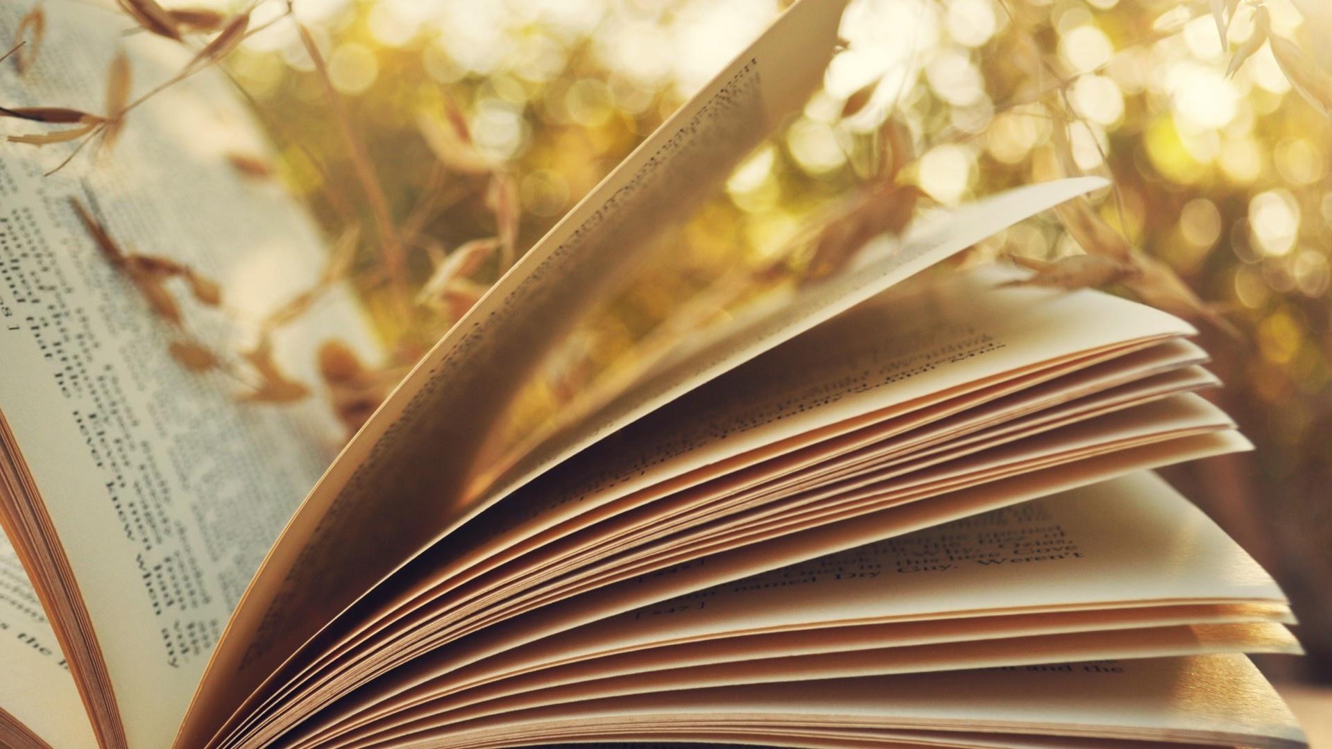 Literary Image