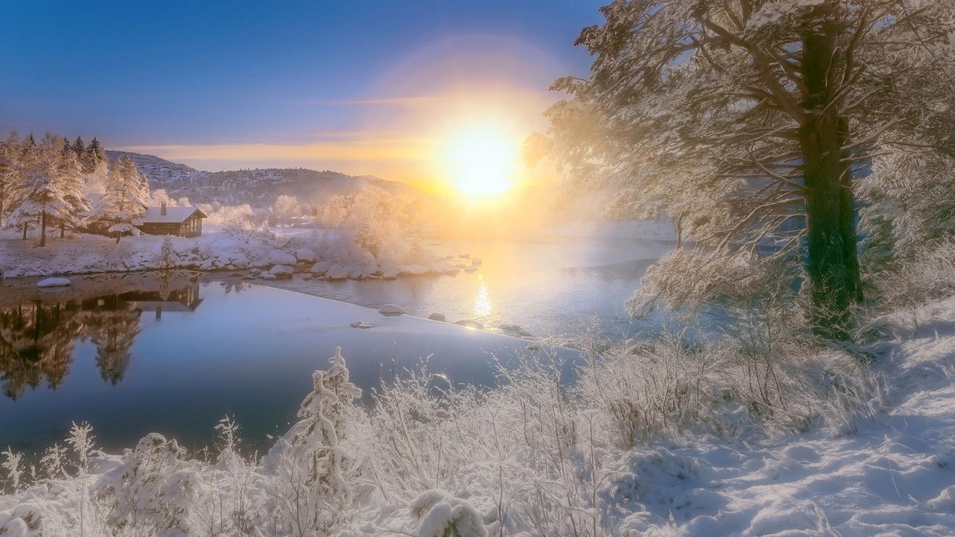 Snowy Morning Image