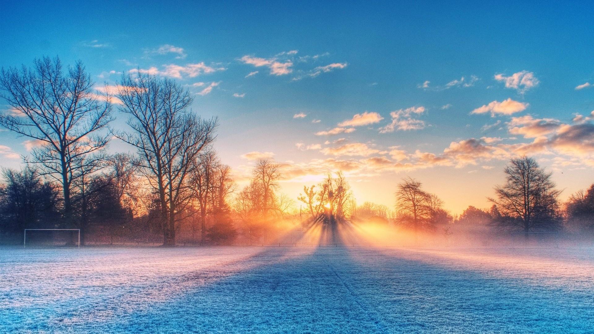 Snowy Morning Desktop Wallpaper