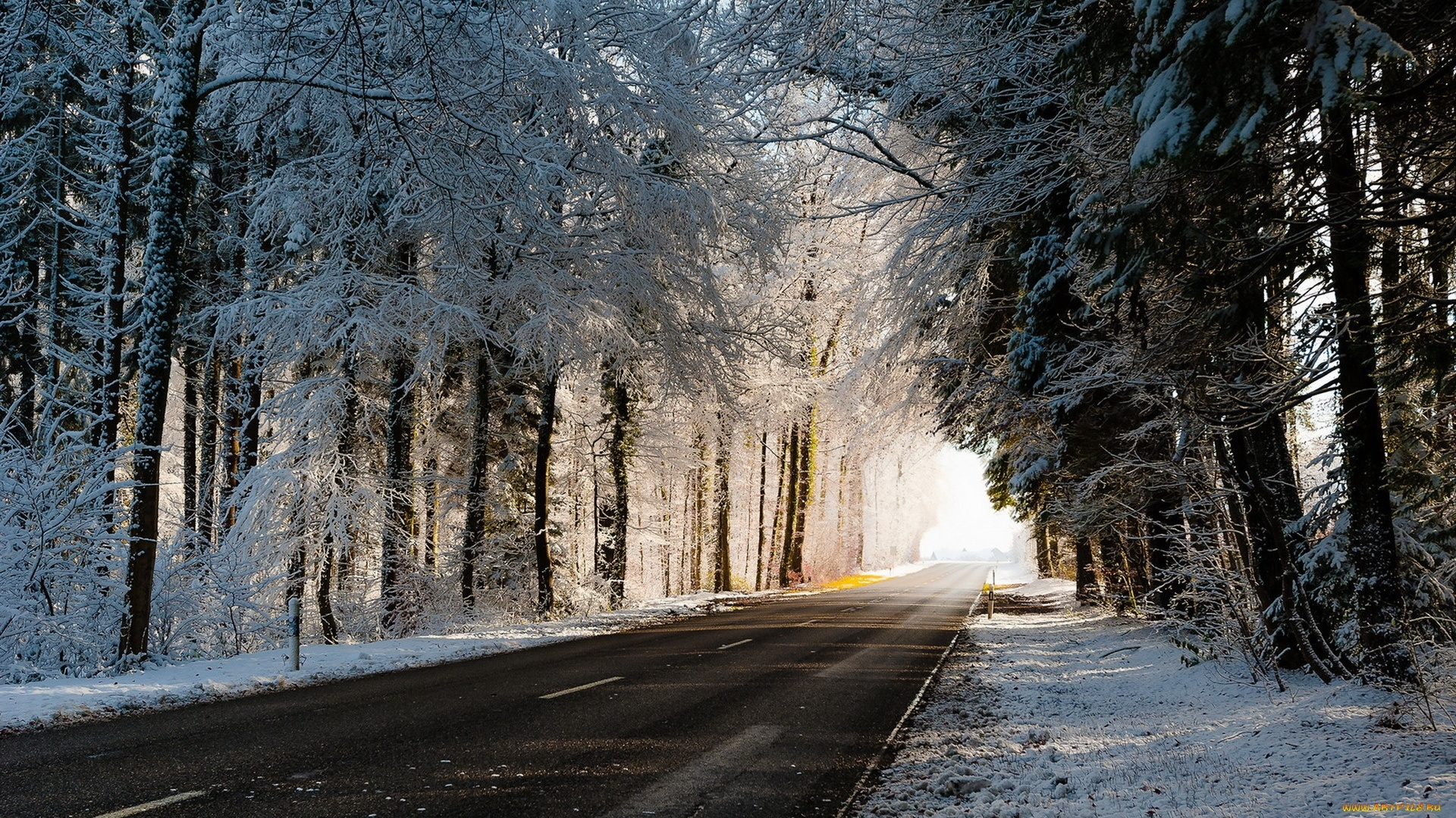 Winter Road Picture