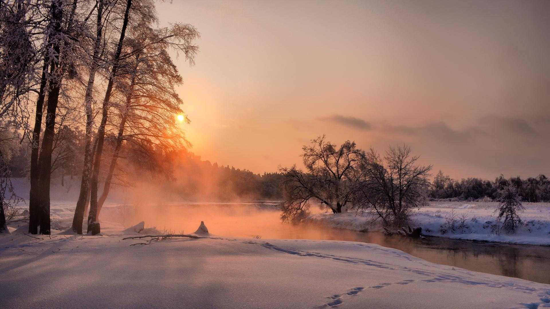 Winter Sunset Picture