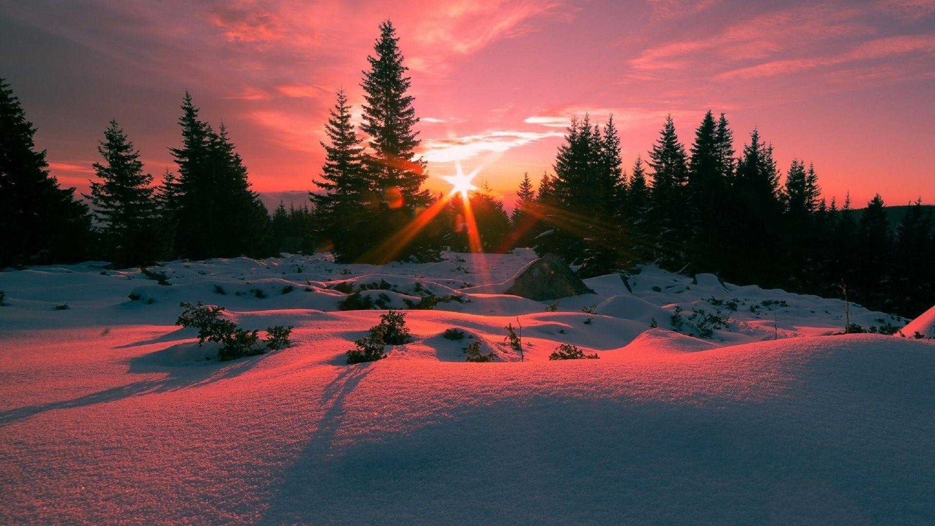 Winter Sunset Desktop Wallpaper