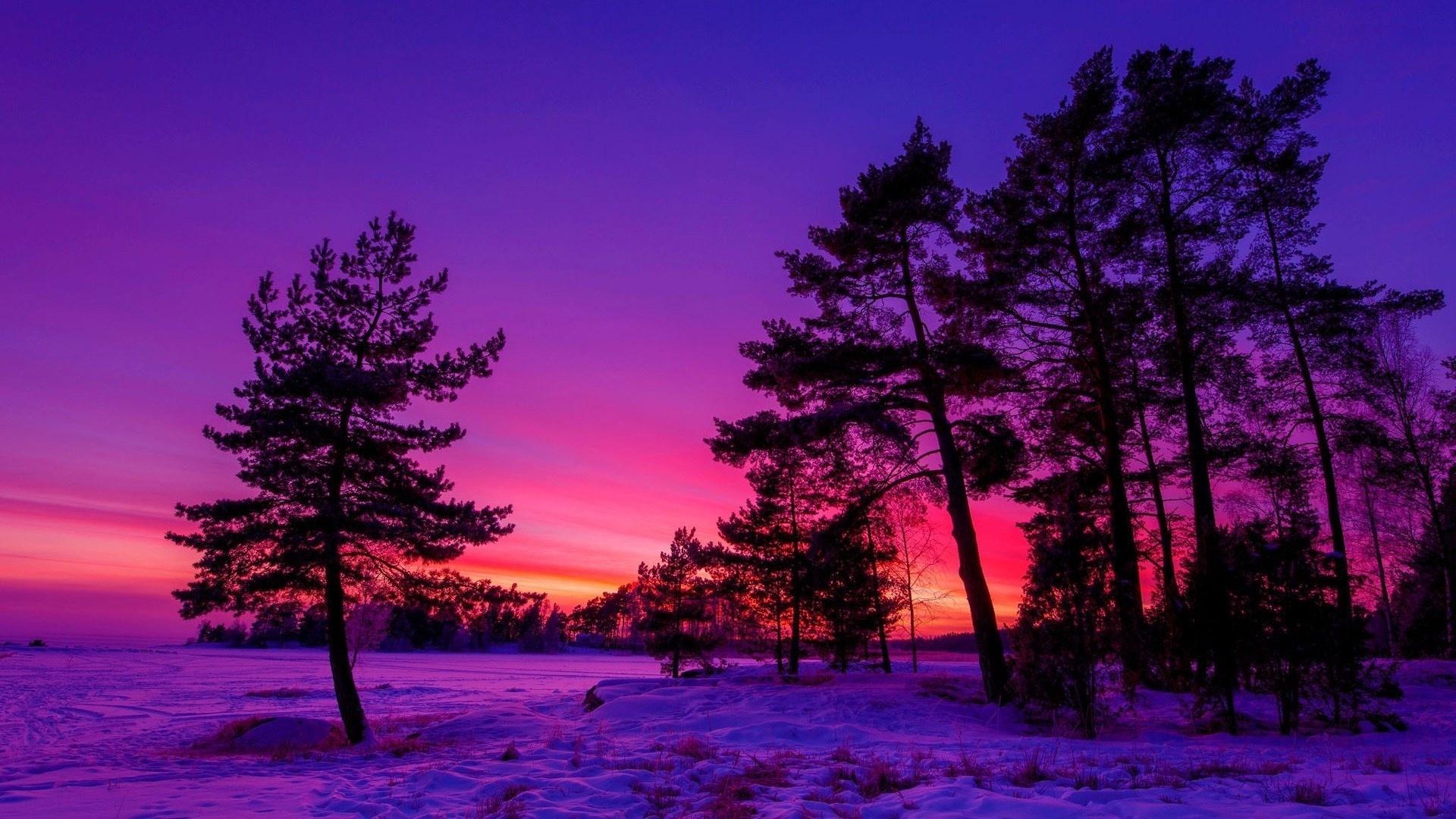 Winter Sunset Background