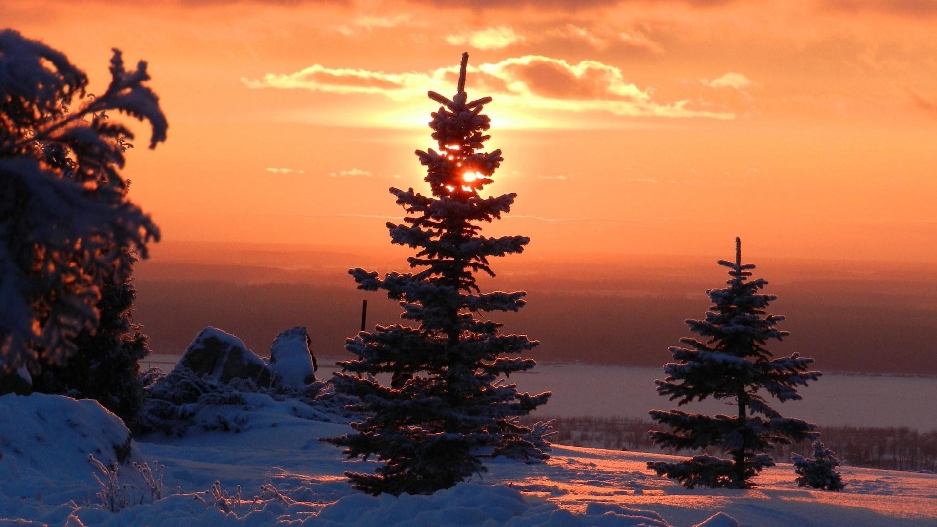 Winter Sunset HD Wallpaper