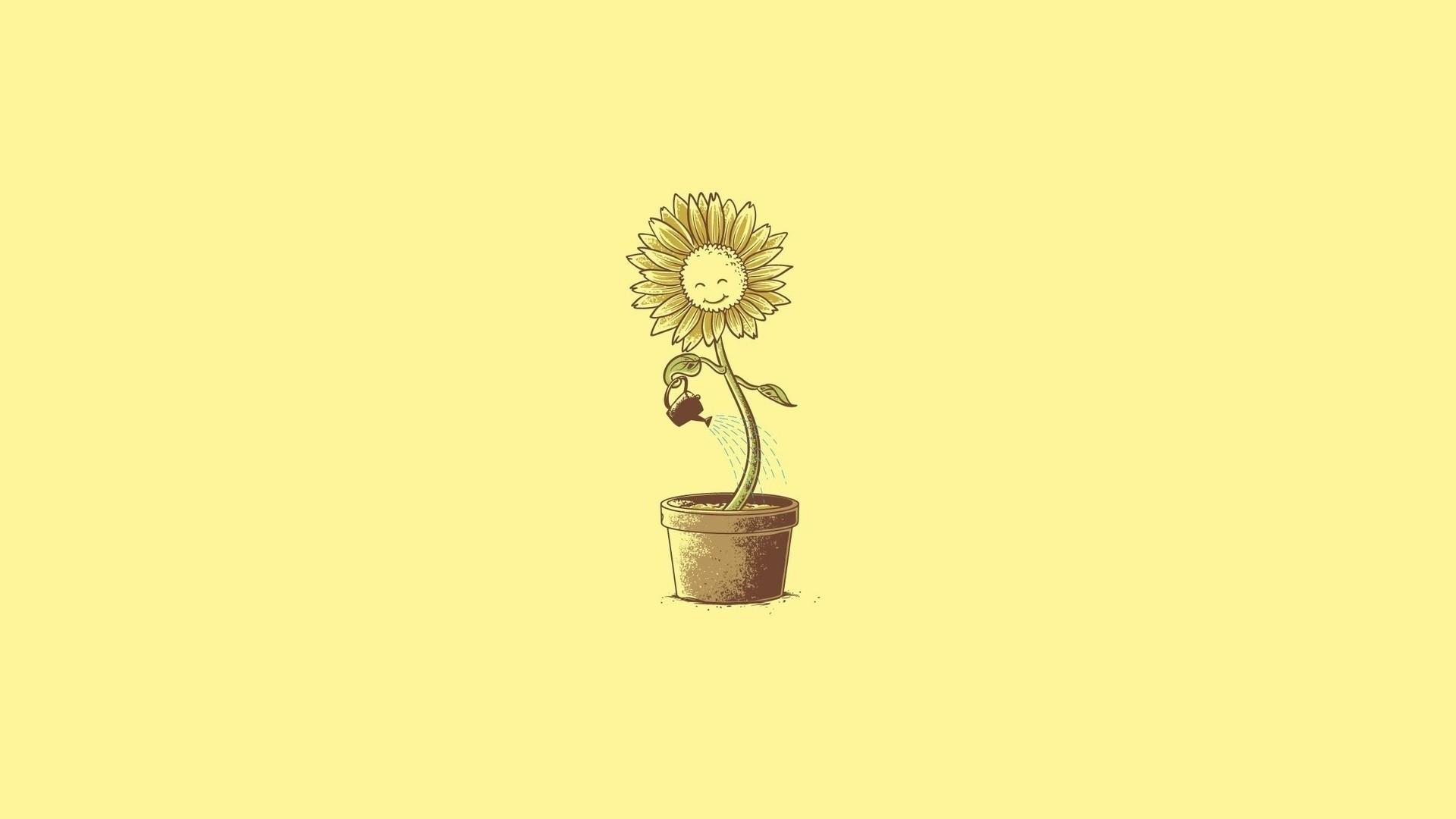 Flower Minimalist desktop wallpaper hd