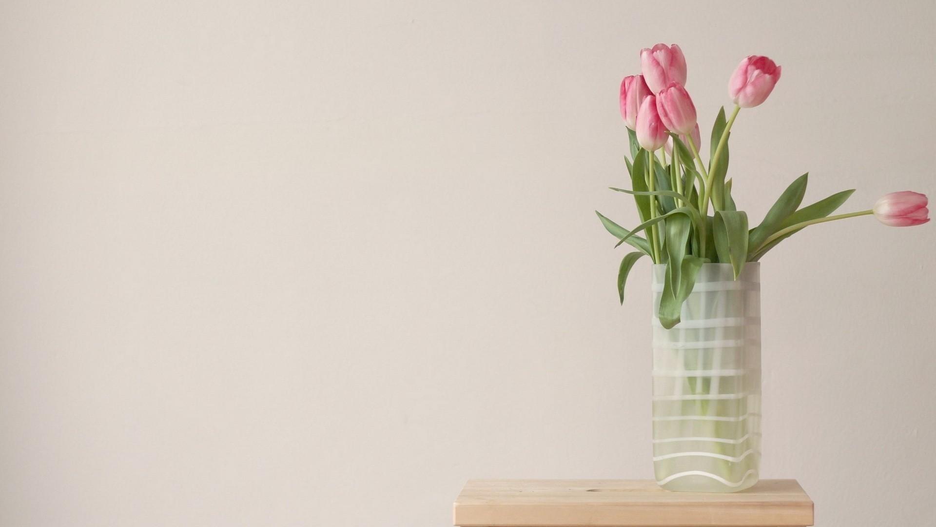 Flower Minimalist wallpaper for pc