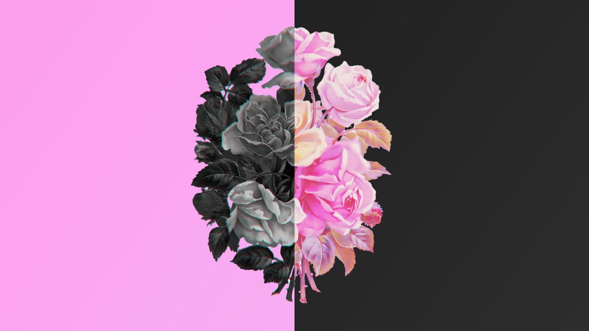 Flower Minimalist Pic