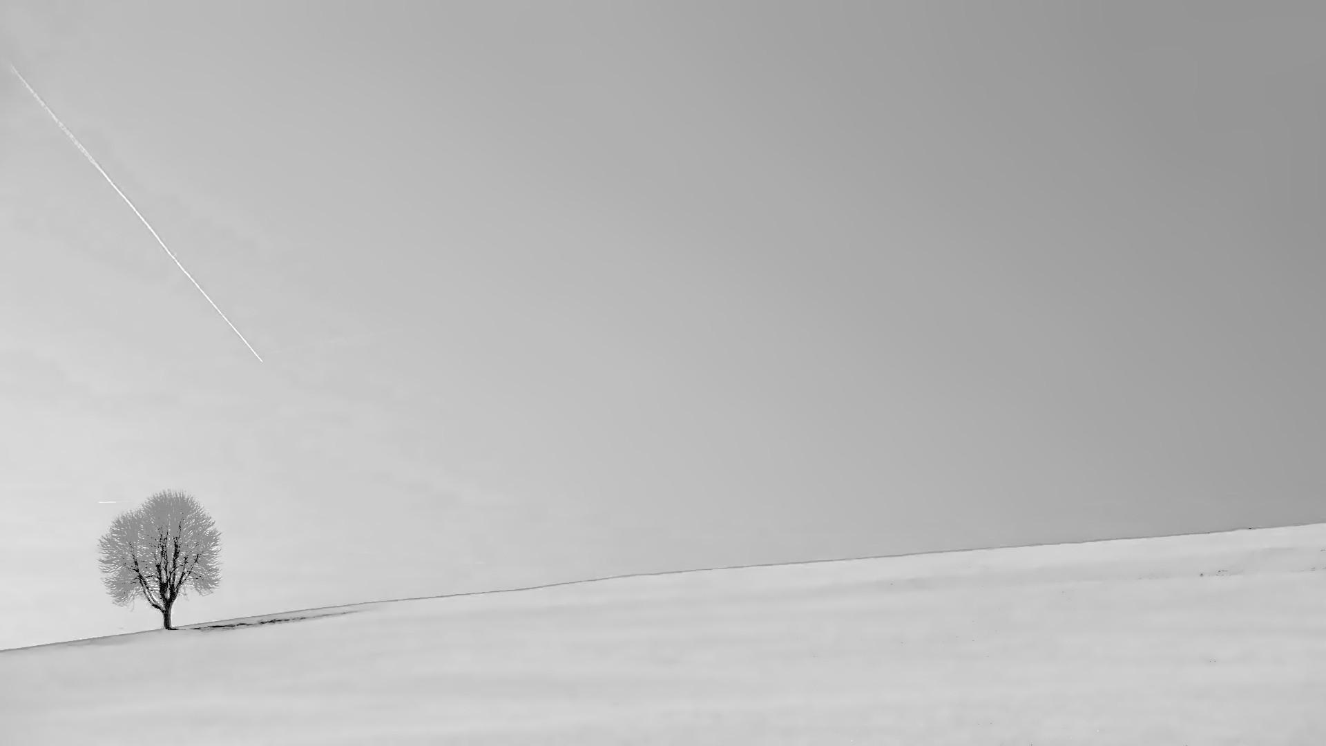 White Minimalist Wallpaper theme