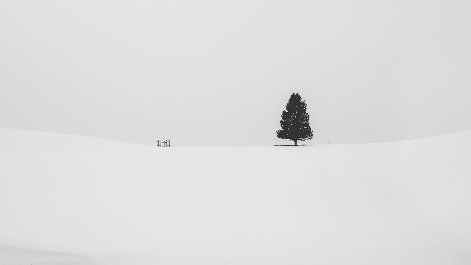 White Minimalist Wallpaper