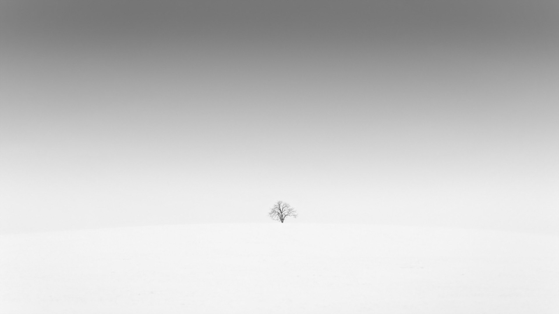 White Minimalist Image