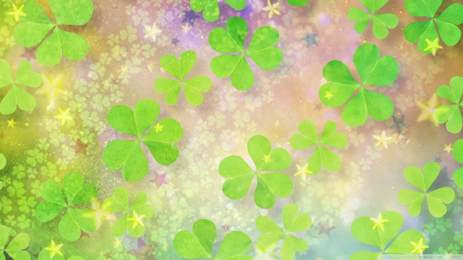 Green Clover Image