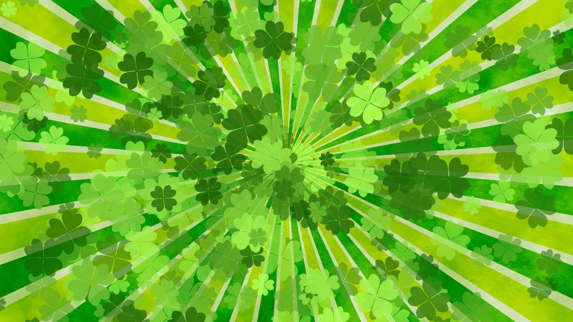 Green Clover wallpaper photo hd