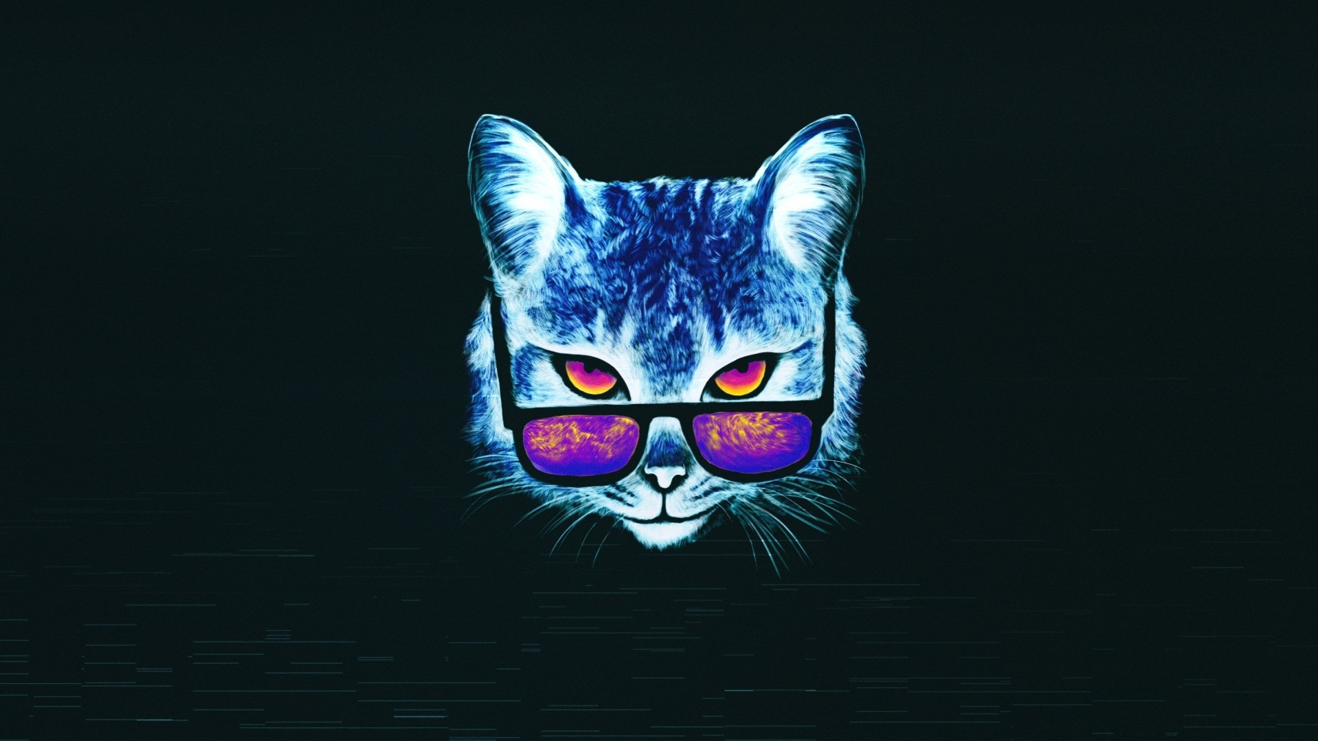 Cat With Glasses Wallpaper
