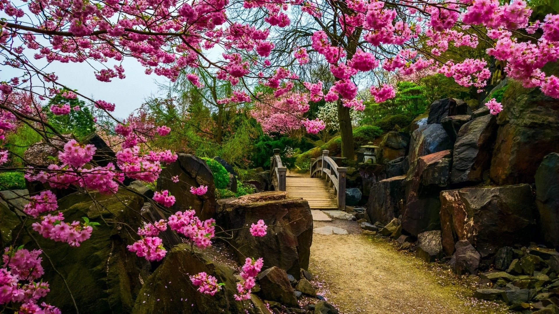 Japanese Garden desktop wallpaper hd