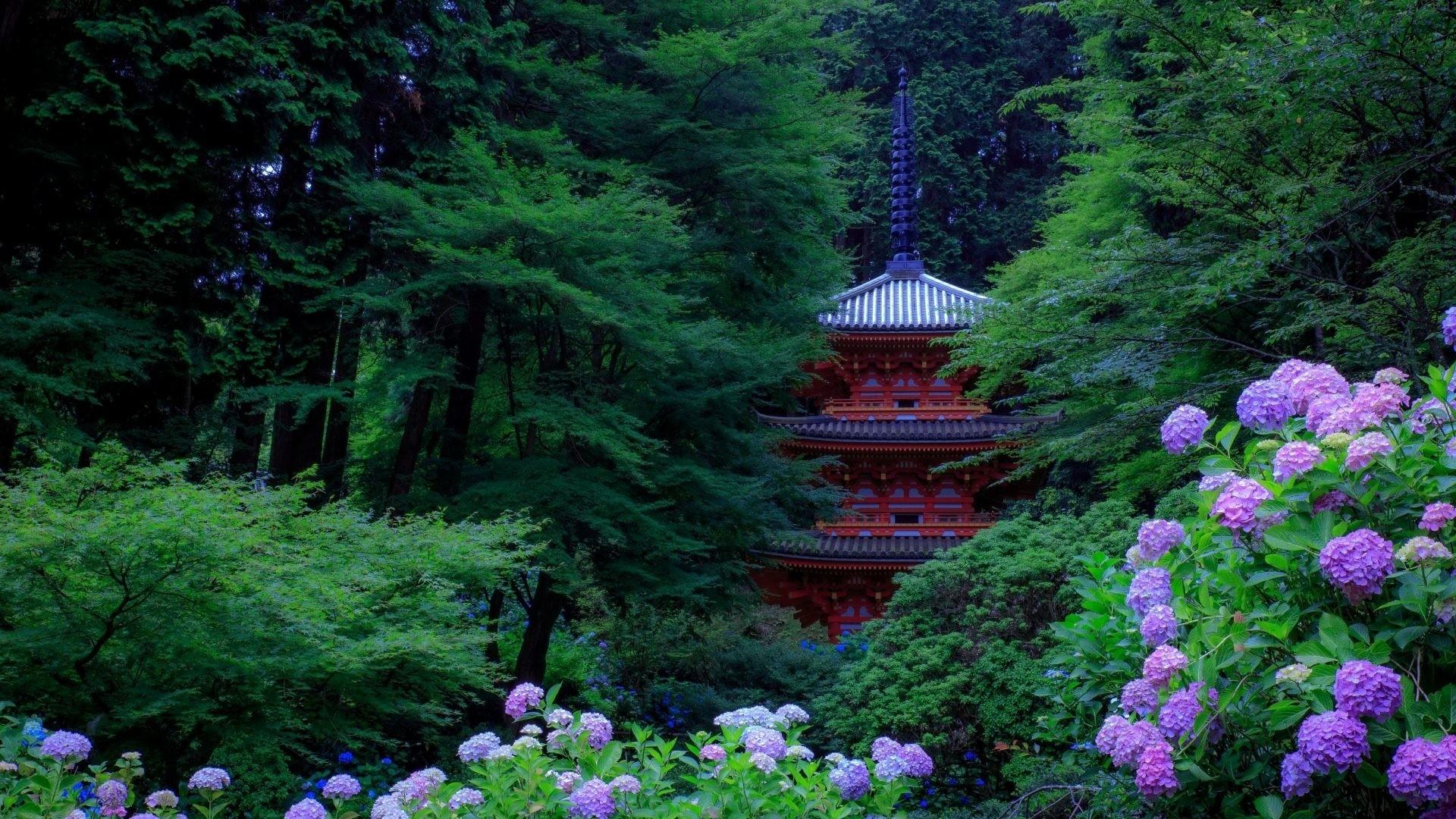 Japanese Garden Pic