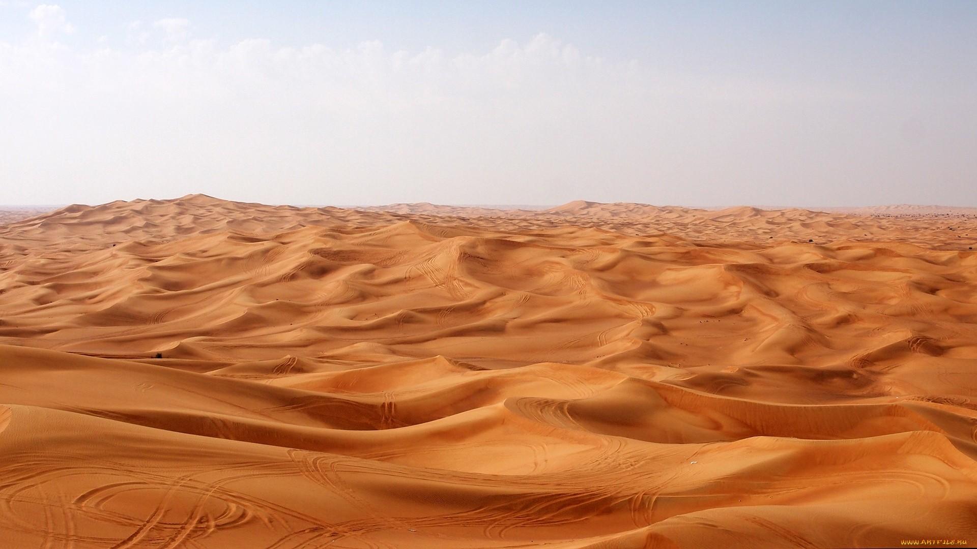 Sahara Image