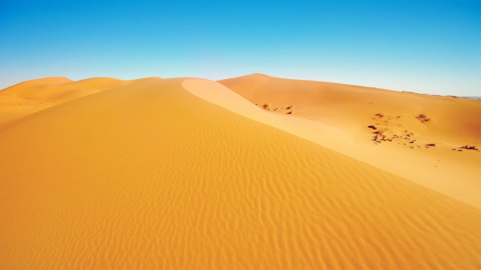 Sahara Wallpaper