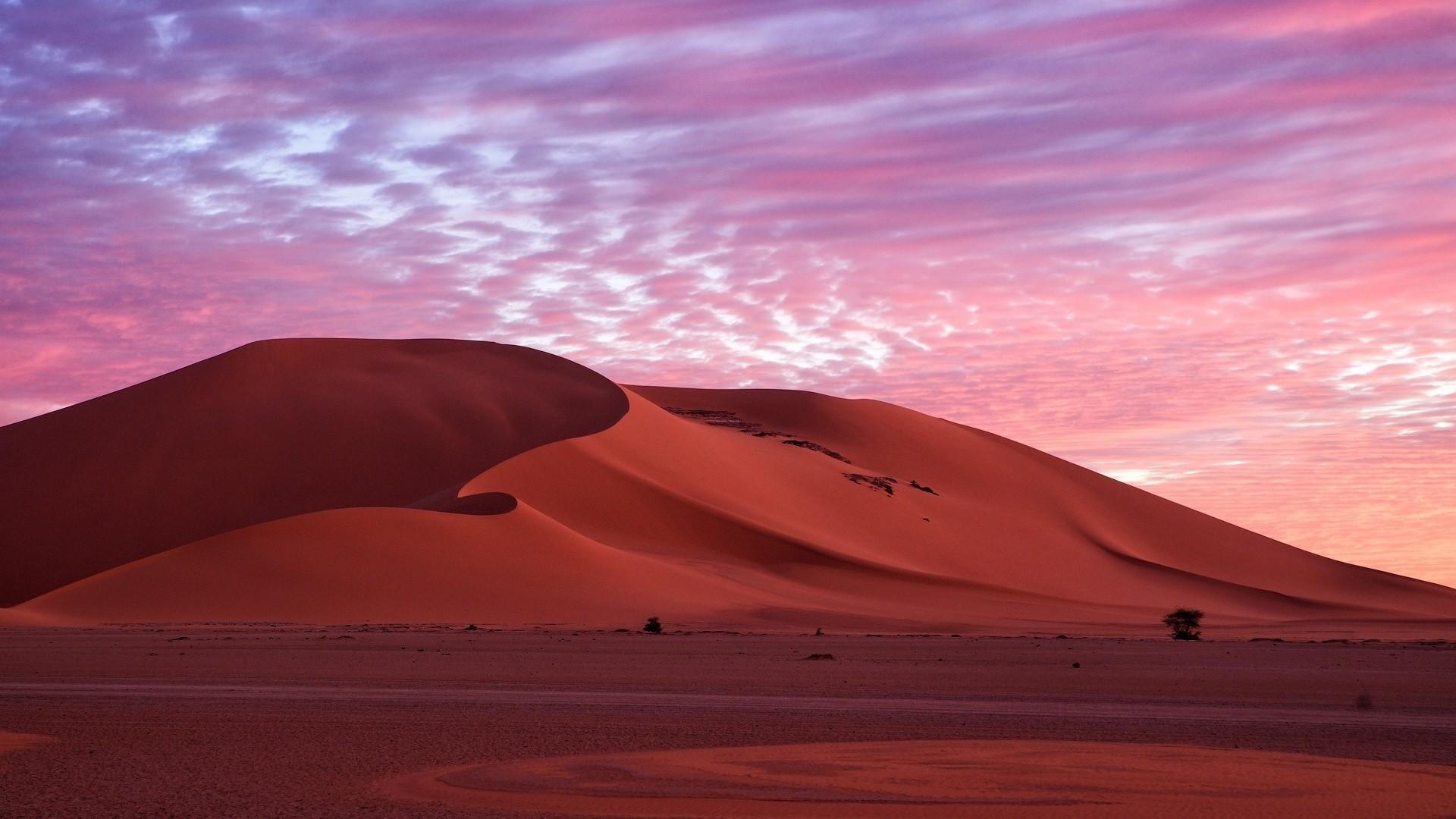 Sahara Wallpaper theme