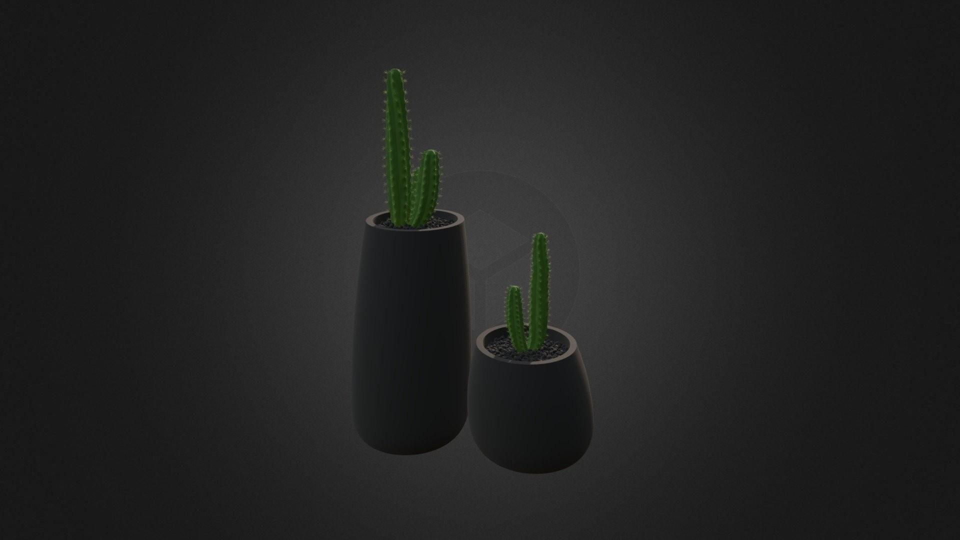 Cactus Minimalist Wallpaper theme