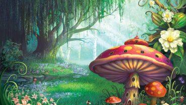 Cartoon Mushroom HD Wallpaper