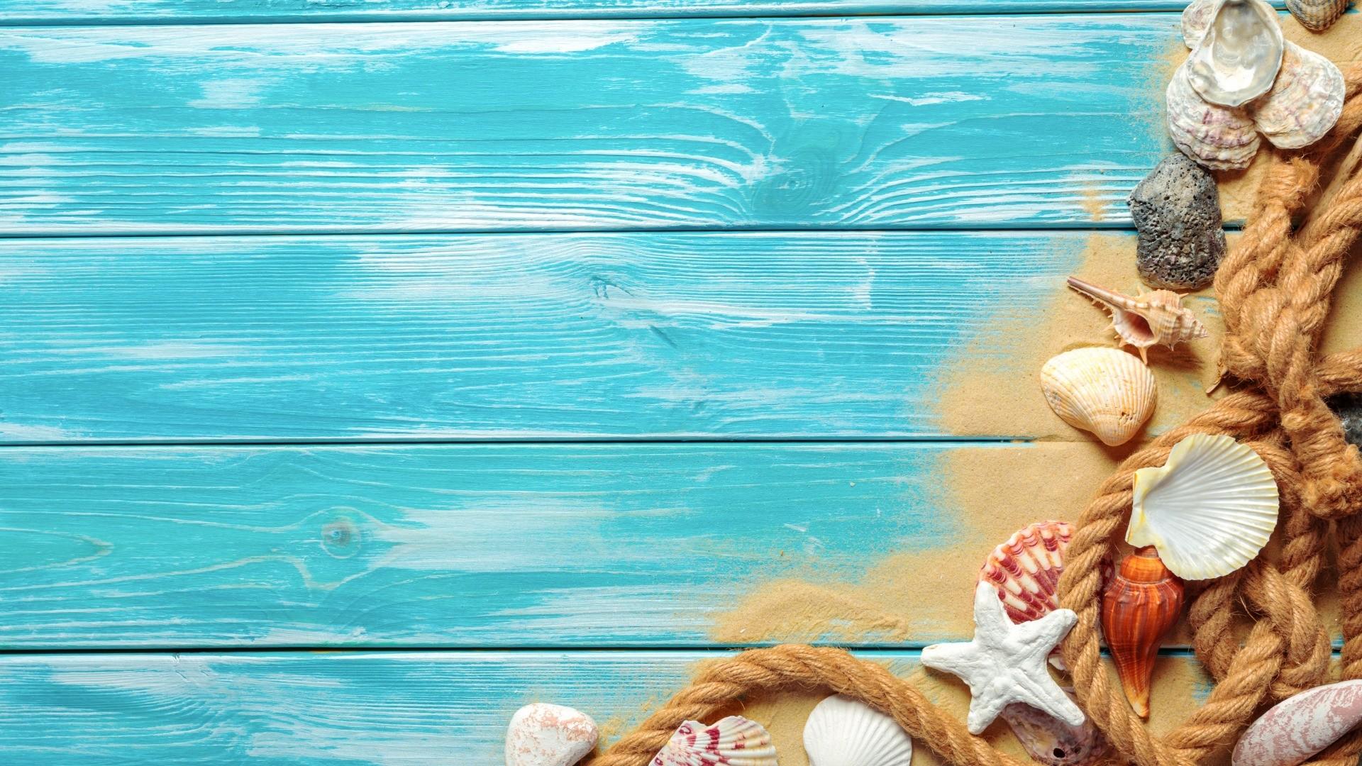 Seashells On Boards Desktop Wallpaper