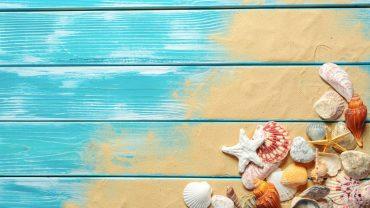 Seashells On Boards wallpaper for desktop
