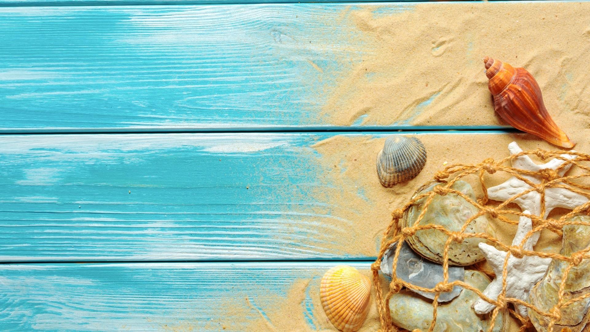 Seashells On Boards Wallpaper theme