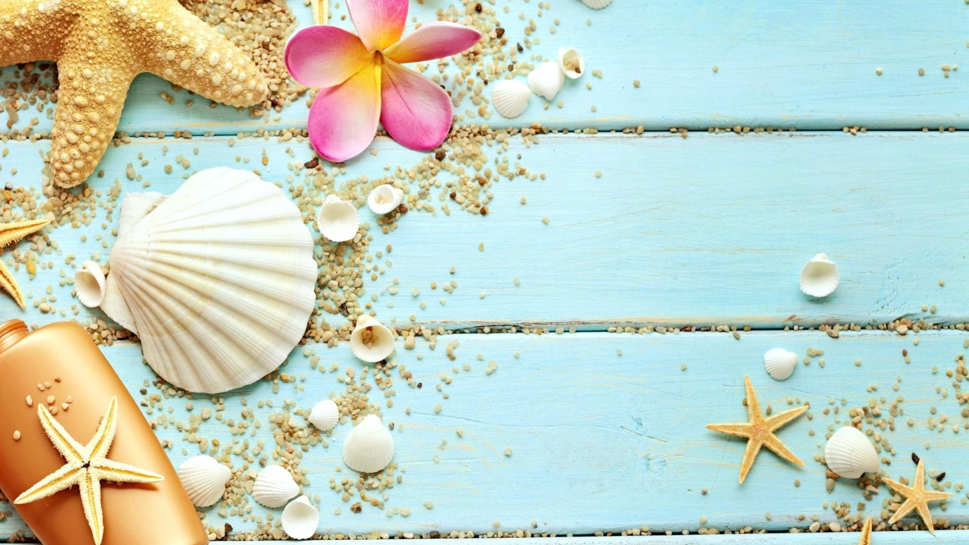 Seashells On Boards wallpaper photo hd