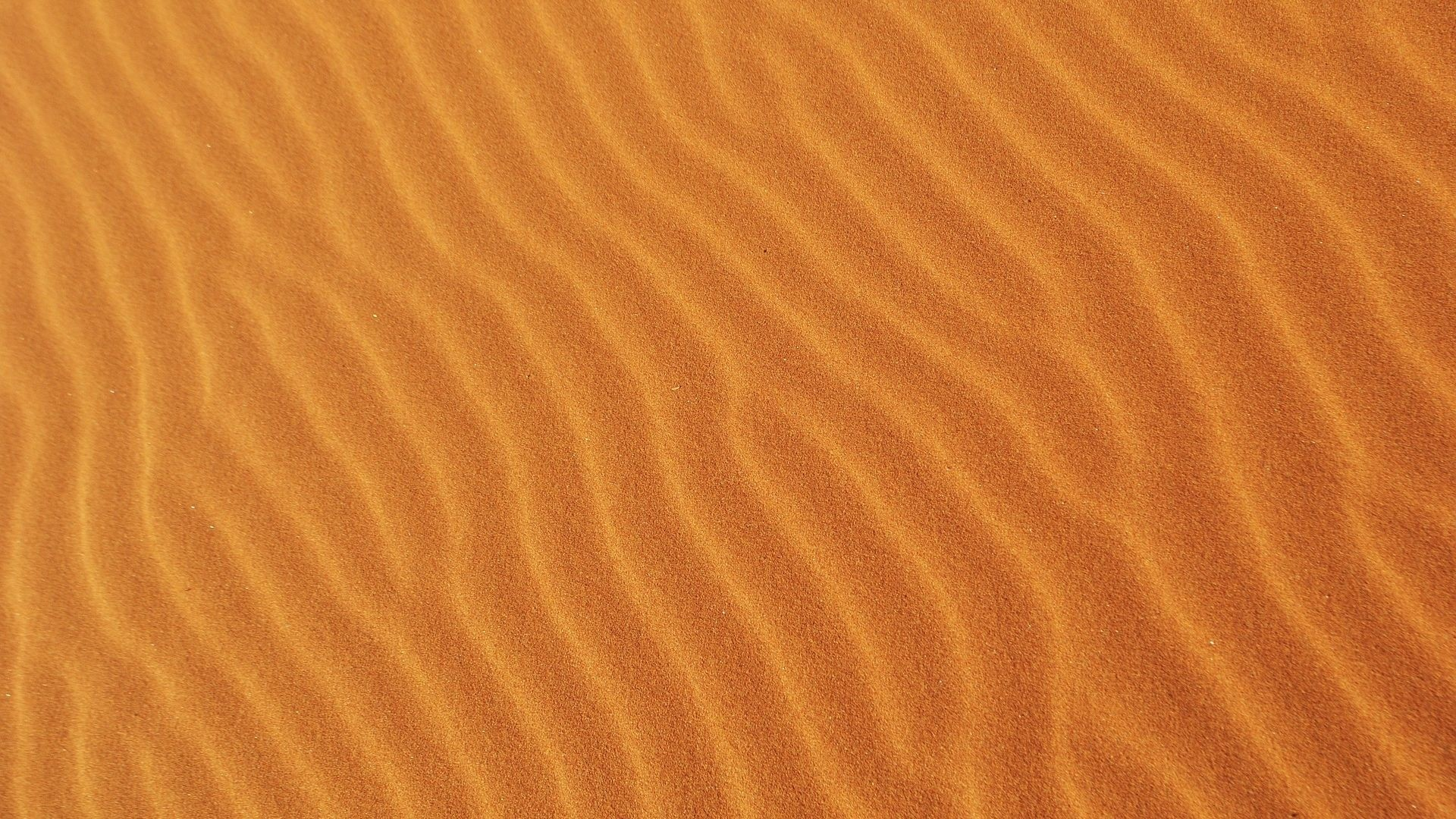Texture Sand Image
