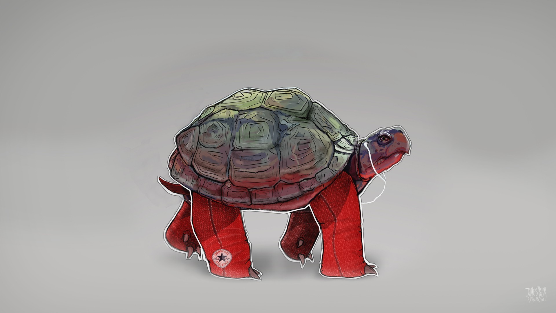 Turtle Minimalist Picture