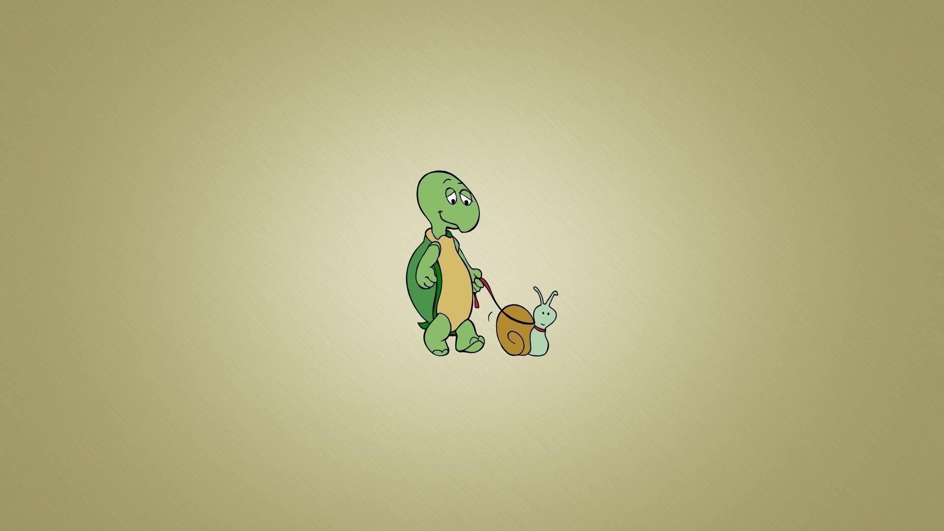 Turtle Minimalist HD Wallpaper