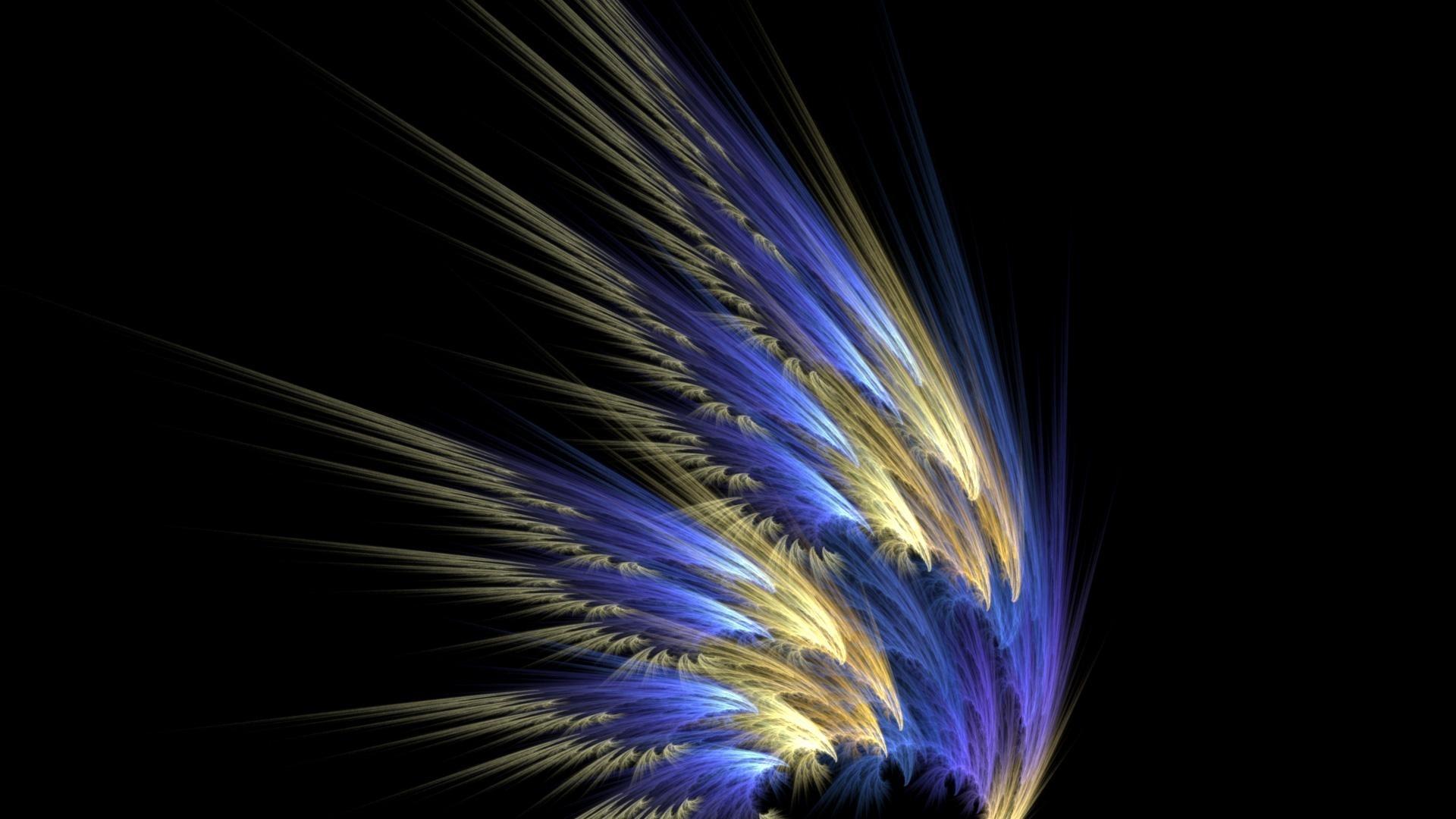 Bird Feather computer wallpaper