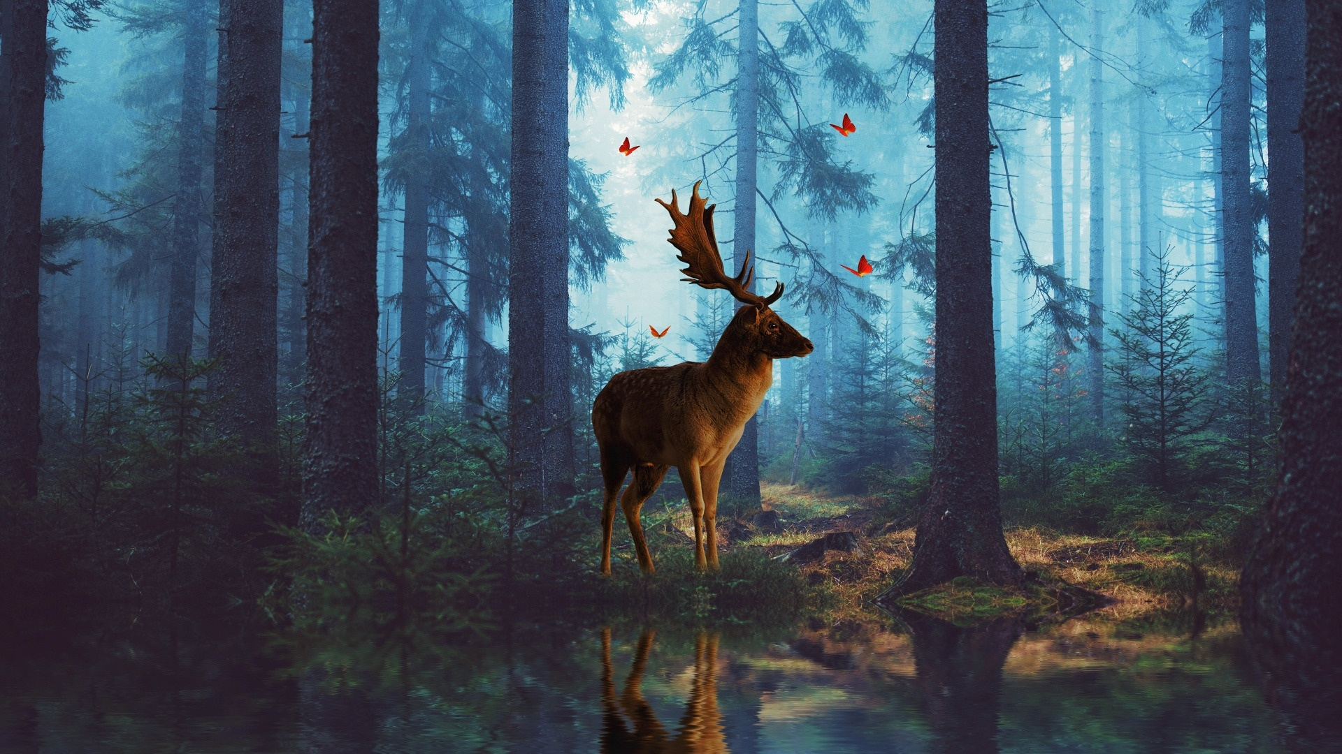 Deer In The Forest wallpaper for computer
