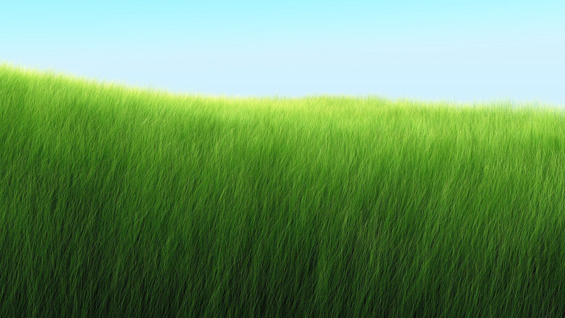 Green Grass Desktop Wallpaper