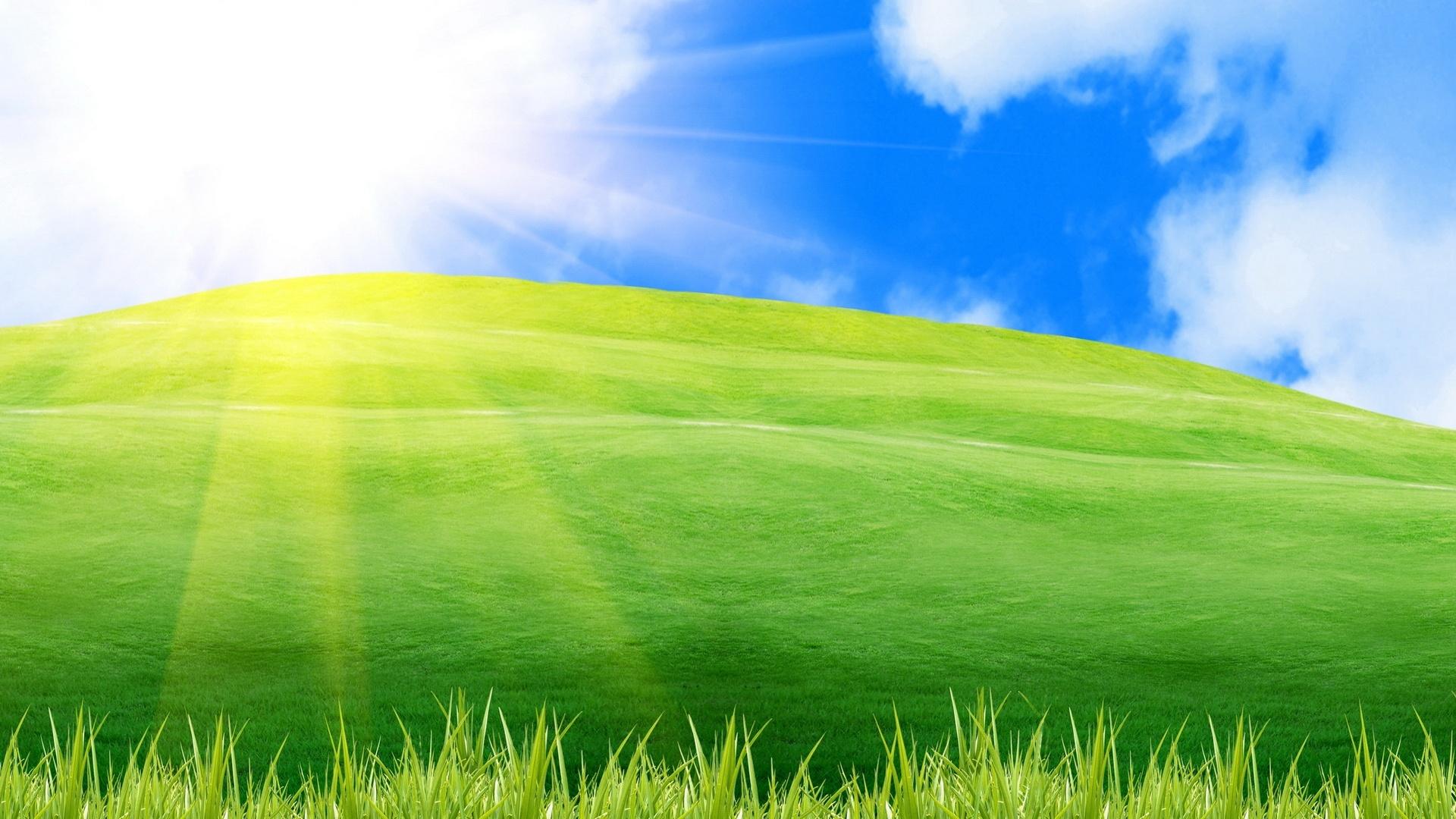 Green Grass Pic