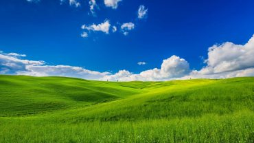 Sky And Grass wallpaper for pc