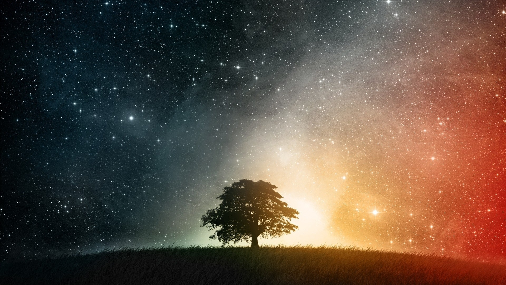 Tree And Space computer wallpaper
