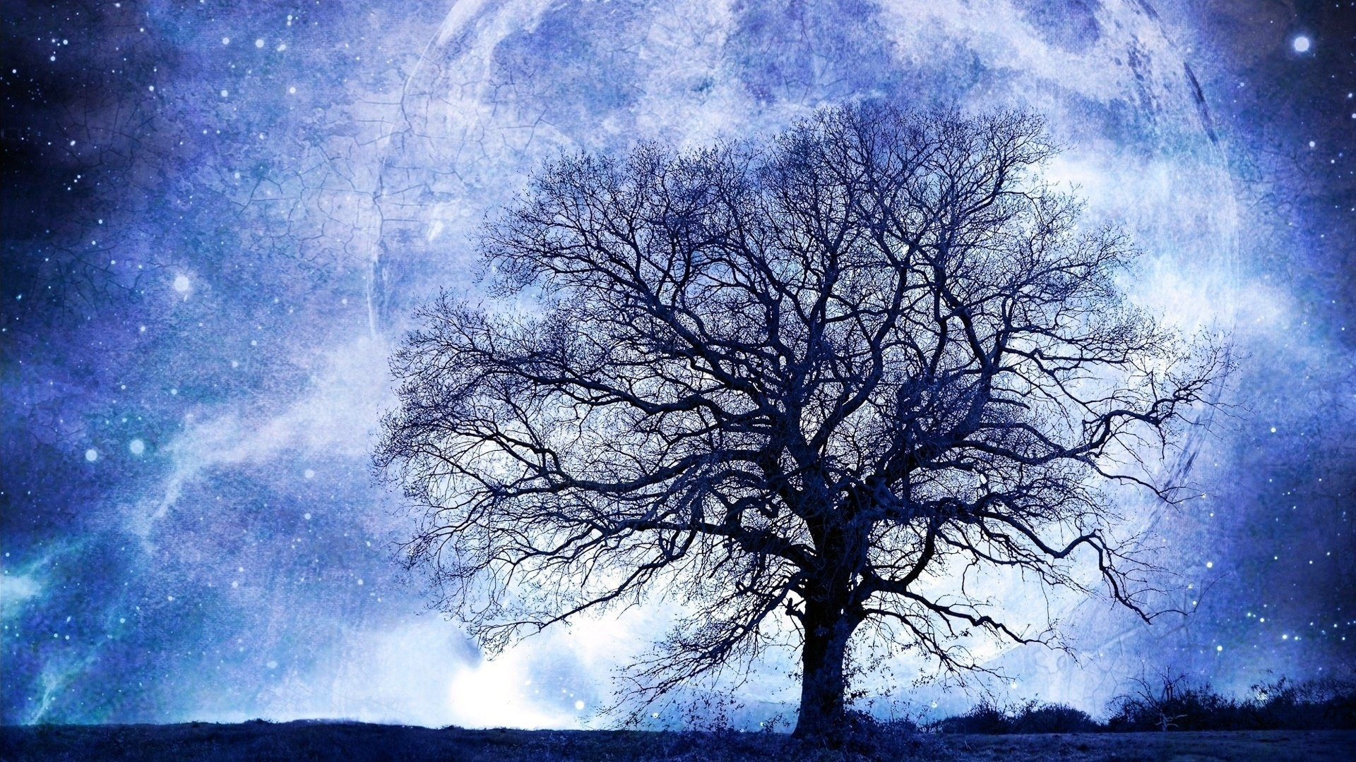 Tree And Space desktop wallpaper hd